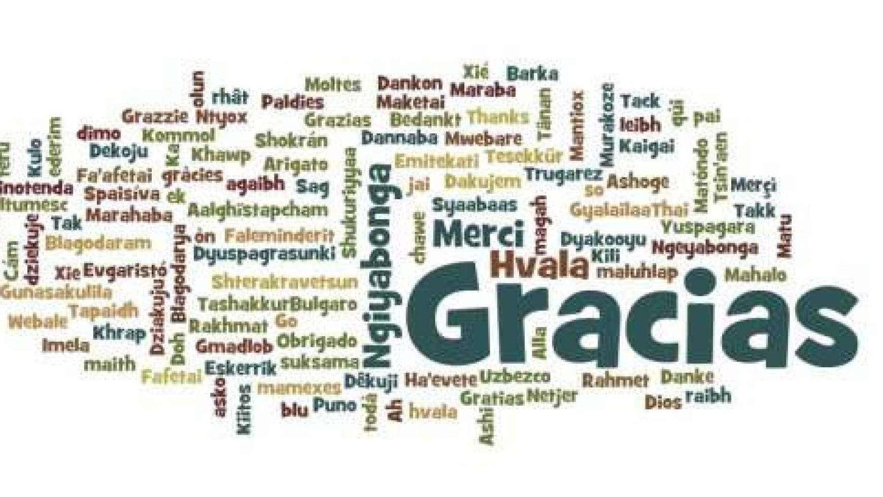 Boletin: Una Fe que no genera en los creyentes alegría y agradecimiento es una Fe enferma escrita (13/10/2013)