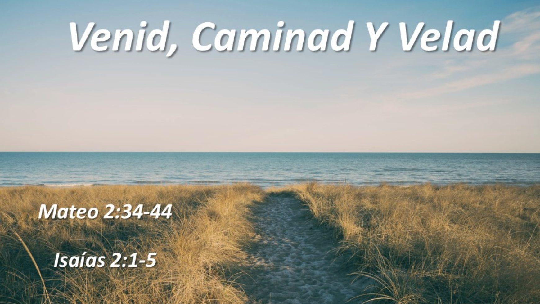 Venid, Caminad Y Velad