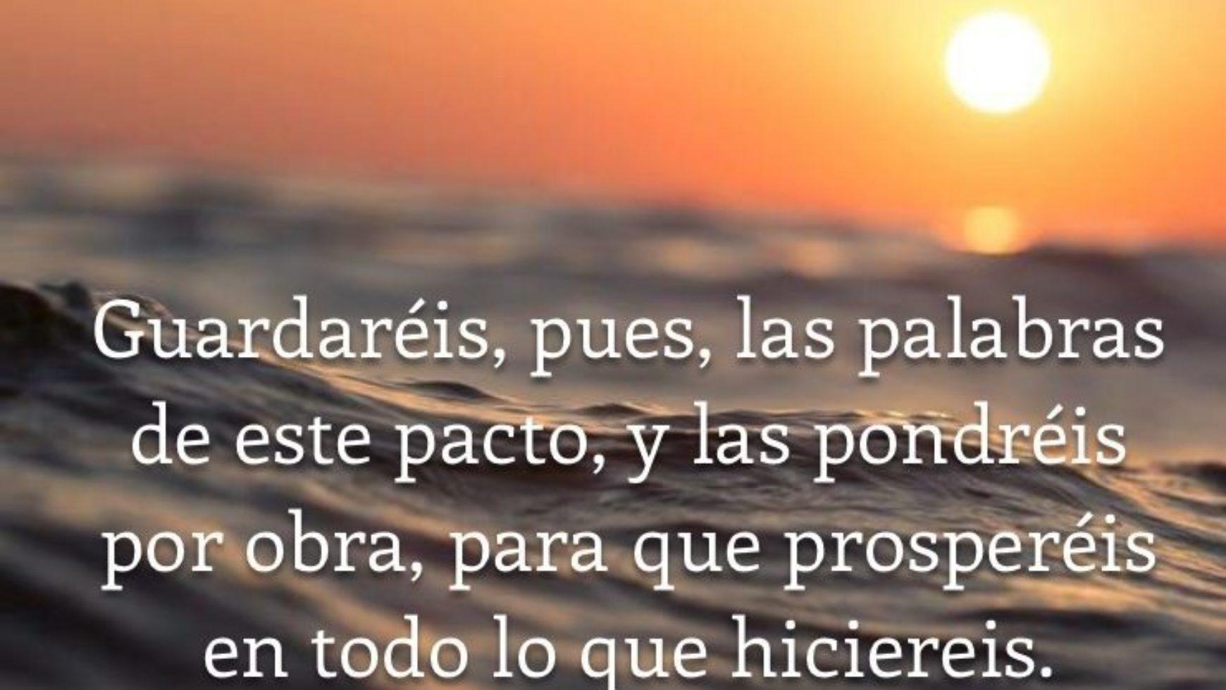 Domingo de Ramos (Juan 12:12-19)