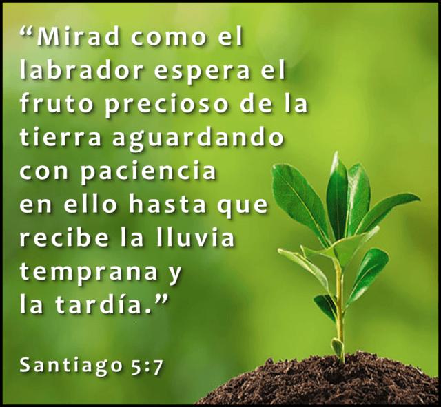 Nuestros miedos (Mateo 10:26-33)